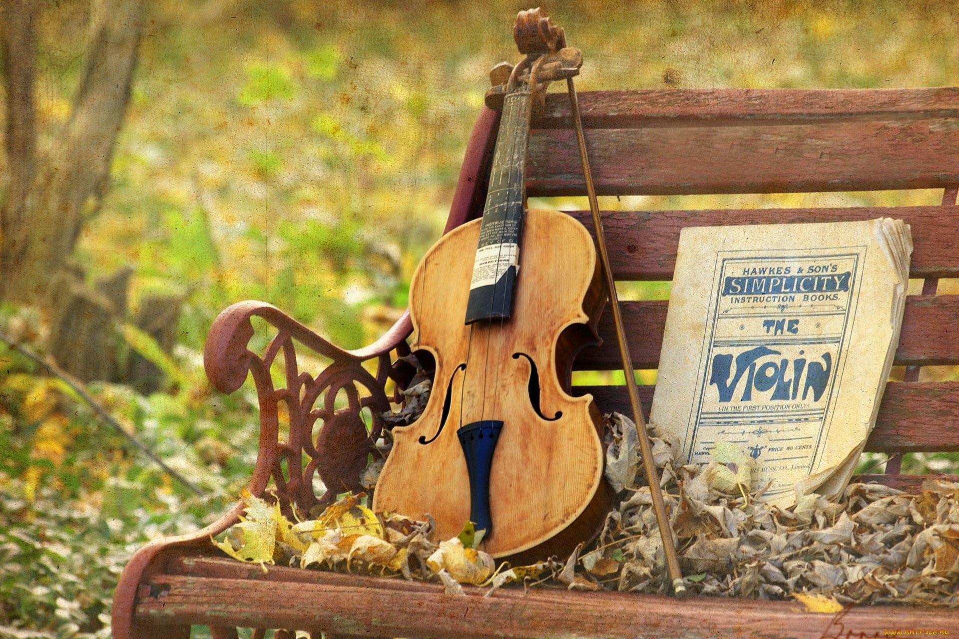 Картинки музыки в природе